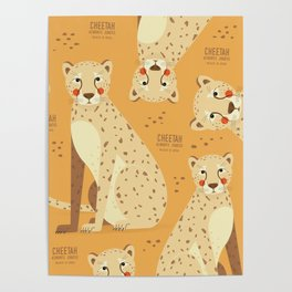 Cheetah, African Wildlife Poster