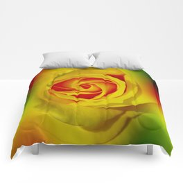 Abstract in Perfection - Rose Comforters