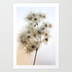 Florales · plant end 8 Art Print