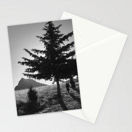 Boca De La Pesca. 1.518 Meters. Bw Stationery Cards