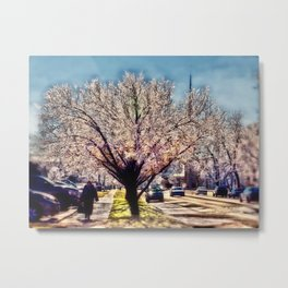 After the Ice Storm Metal Print