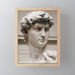 "Michelangelo ""David"" (head)(1) Framed Mini Art Print"