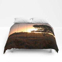 Evening Golden Landscape Comforters