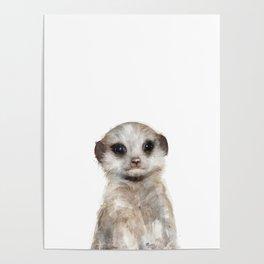 Little Meerkat Poster