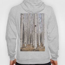 Trees of Reason - Birch Forest Hoody