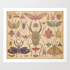 Entomologist's Wish Art Print