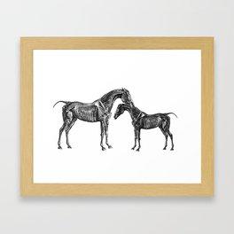 Horsy Horsy Framed Art Print