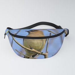 Cedar Waxwing Bird (2) by Reay of Light Fanny Pack