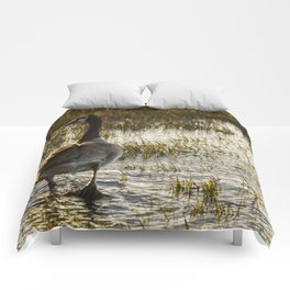 The Golden Goose Comforters