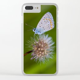 The butterfly and the delicate plant Clear iPhone Case