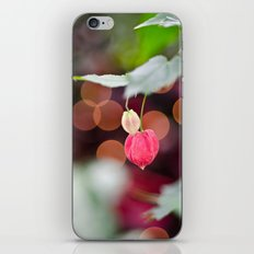 Festive Flowers iPhone & iPod Skin