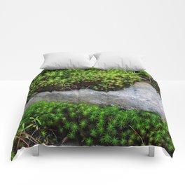 Vibrant Moss Comforters