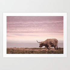 sunset and the highland cow Art Print