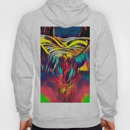 1298s-AK Abstract Pop Color Erotica Explicit Psychedelic Vulval Anal Celebration Hoody
