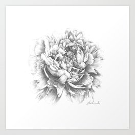Peony In the Name of Love  Art Print