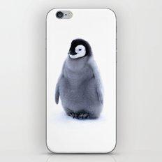A little penguin  iPhone & iPod Skin