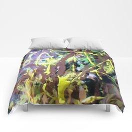 Zoom sur conque chocolat Comforters