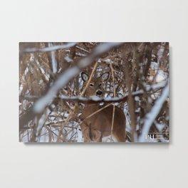 Wooded Deer Metal Print