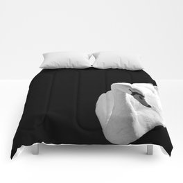 Swan On Black Comforters