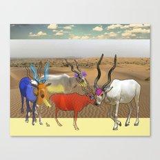 Addax Canvas Print