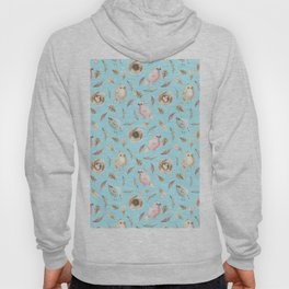 Birds and Feathers in Spring Hoody