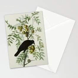 Vintage Crow Illustration Stationery Cards