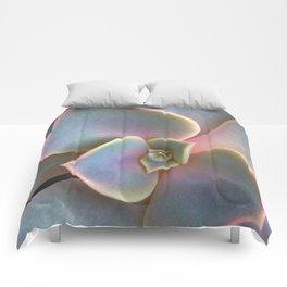 Succulent Dew Drop Comforters