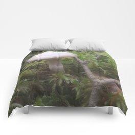 Fogged Cortinarius Comforters