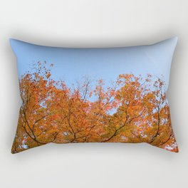 Focusing on Fall: 4 Rectangular Pillow