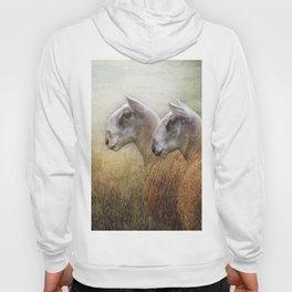 Golden Fleece Hoody