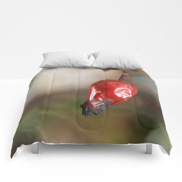 Red Rose Hip Macro Photography Comforters
