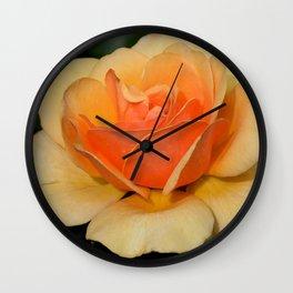 Single orange rose Wall Clock