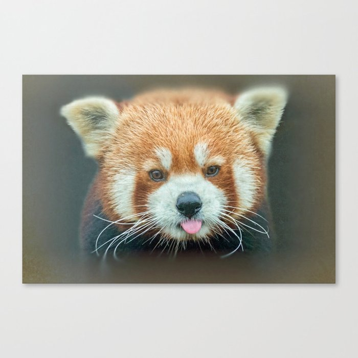 PANDA-RING TO ONE'S TASTE Canvas Print