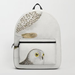 19 The Hawk Owl (Surnia funerea) 20 The Snow Owl (Surnia nyctea)  from Zoology of New York (1842-184 Backpack