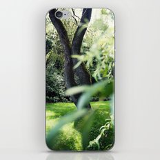 Willow iPhone & iPod Skin
