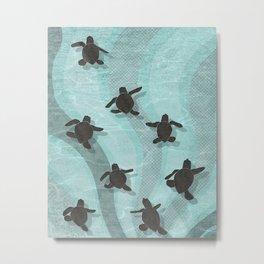 Loggerhead sea turtle hatchlings Metal Print