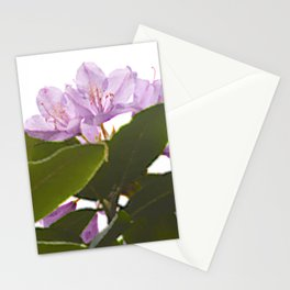 Pink Azalea Flowers with Spring Green Leaves Stationery Cards