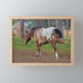 In the Pasture Framed Mini Art Print