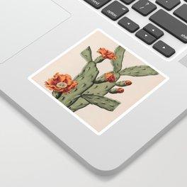 Botanical Cactus Sticker