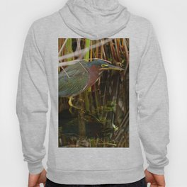 Beautiful Green Heron Hoody