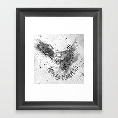 FIG. 756 (Haliaeetus leucocephalus) Framed Art Print
