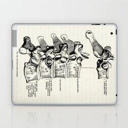 Vintage Anatomy Illustration of the Thoracic vertebrae Laptop & iPad Skin