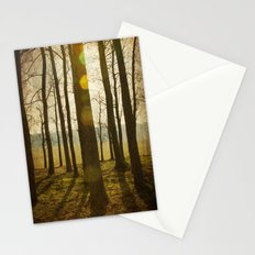 Afternoon Sunlight with Lens Flare Stationery Cards