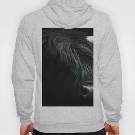 Minimalist Black Scottish Highland Cattle Portrait - Animal Photography Hoody