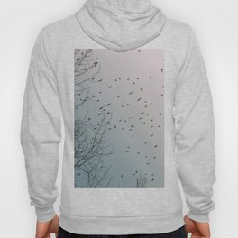 Birds and branches Hoody