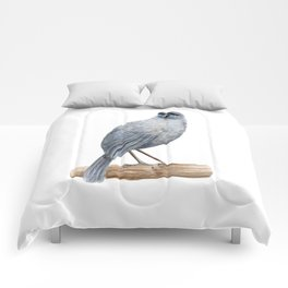 Kokako - a native New Zealand bird 2013 Comforters