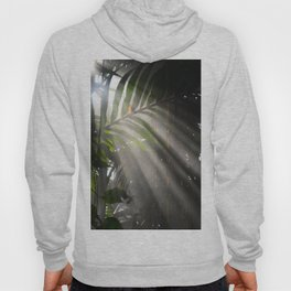 Photosynthesis Hoody