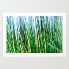 Breezy Art Print