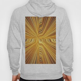 Electric Field Art XXVI Hoody