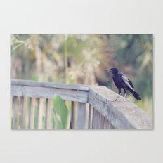 Bird Speak Canvas Print
